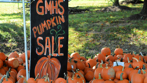 Buy A Pumpkin at GM, Enter the Annual Pumpkin Carving Contest at TJ