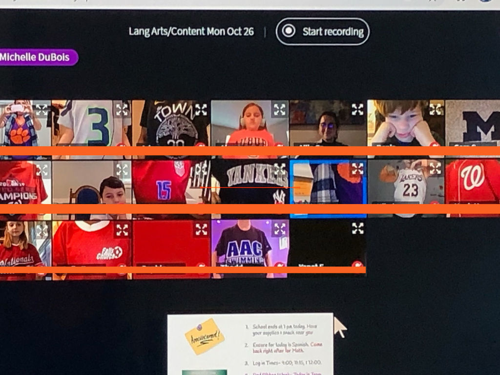 Screenshot of a class video conference.  Students are wearing t-shirts for their favorite team.